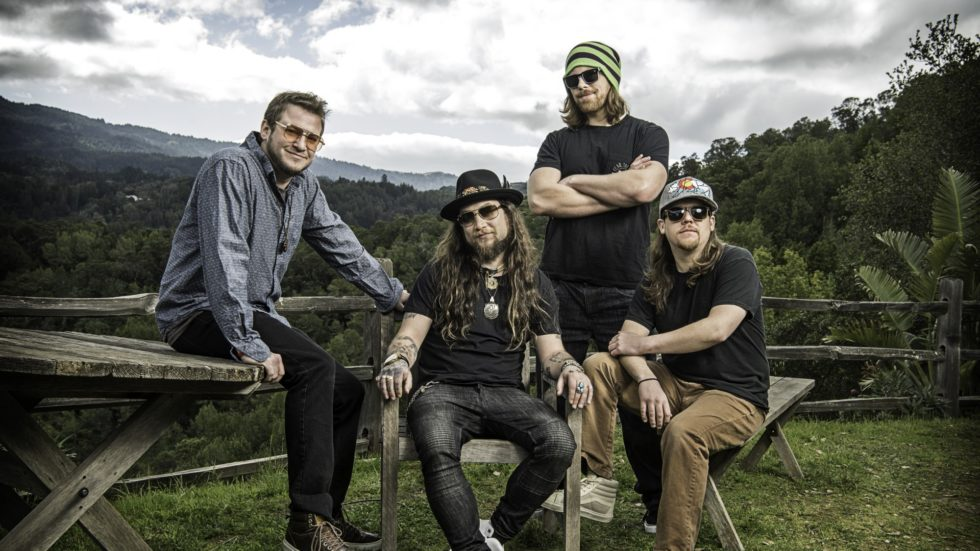 Twiddle and Pigeons Playing Ping Pong