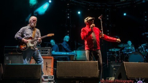 Jimmy Cliff WSP