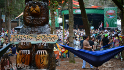 Review And Media | Bear Creek Music Festival | Florida