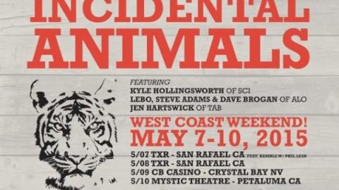 Tour Dates | The Return Of Incidental Animals
