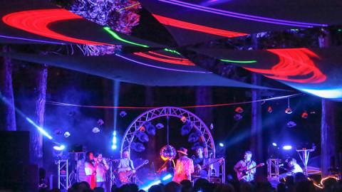 Review & Photos   Guitarfish   Cisco Grove