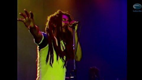 Bob Marley Uprising Live DVD Due In November