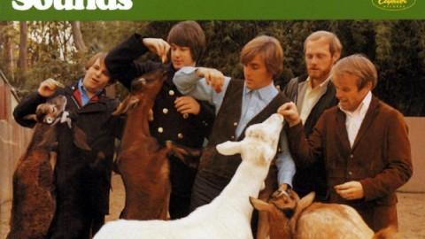 Former Beach Boys Offer Surprise Performance Of Pet Sounds