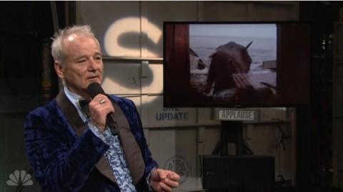 DVR Rewind   Music Of Saturday Night Live 40th Anniversary