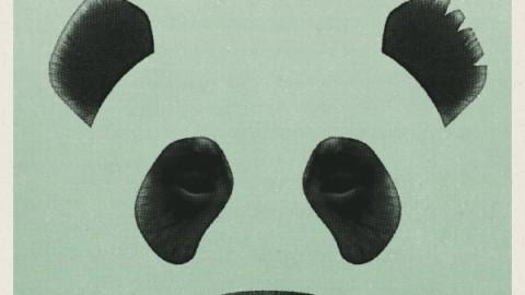 Giant Panda Guerilla Dub Squad Announces New Album