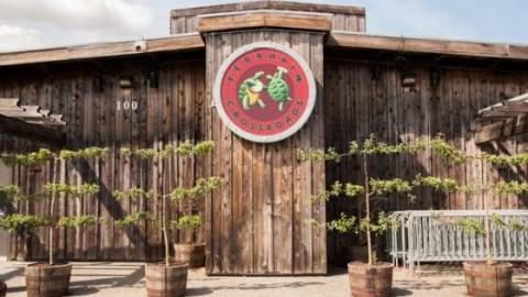 Phil Lesh Announces Terrapin Crossroads Summer Harvest House Party