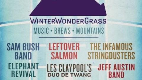 WinterWonderGrass 2015 Lineup Announcement