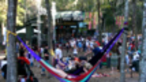 Bear Creek Festival | 11.13-11.15 | FL