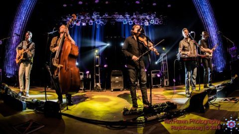 The Infamous Stringdusters Honor Walter Becker At Strawberry Music Festival