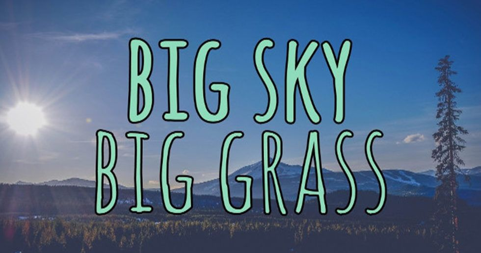 bigskybiggrass