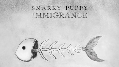 Snarky Puppy New Album Immigrance Xavi