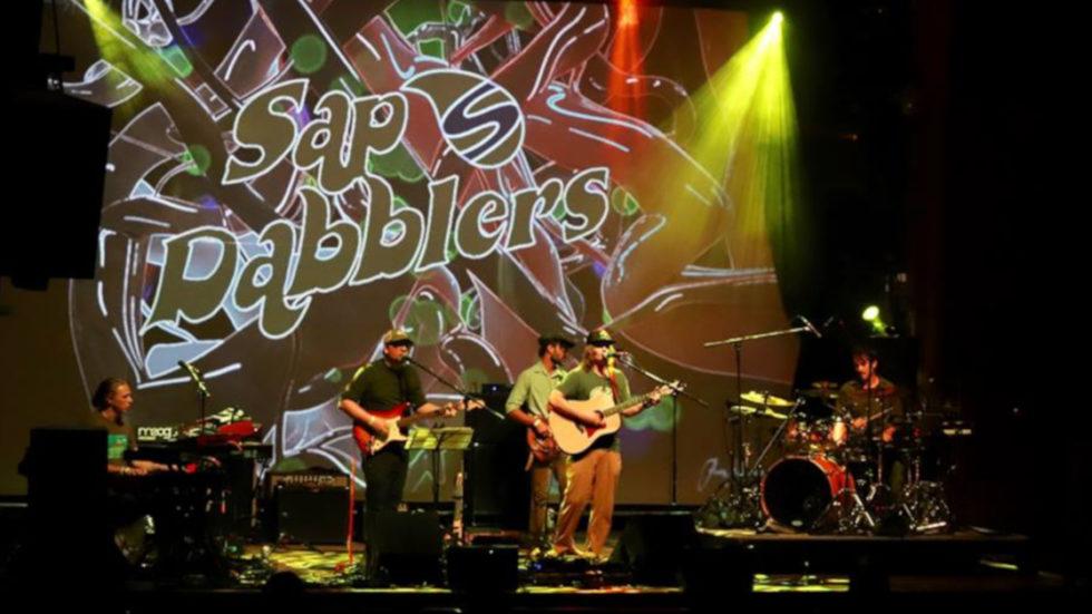 Sap Dabblers