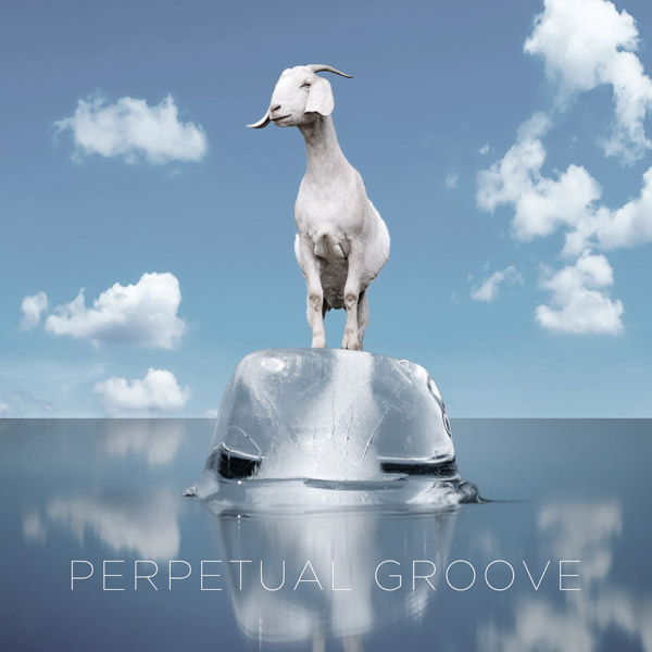 perpetual-groove-the-new-album-600