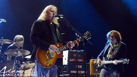 Gov't Mule Mountain Jam