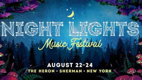 Night Lights Music Festival Logo 2019