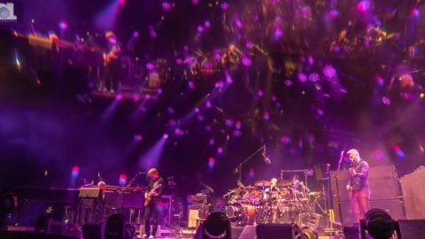 Phish Bonnaroo Friday
