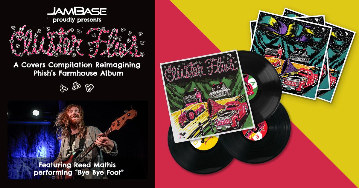 Reed Mathis Covers 'Bye Bye Foot'
