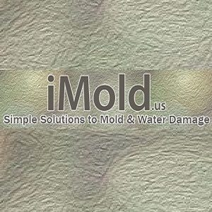 iMold US Water Damage & Mold Removal Service Cape Coral