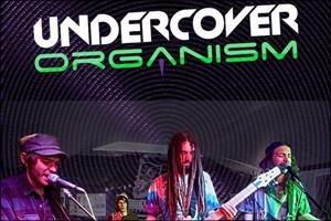 Undercover Organism and Splimit
